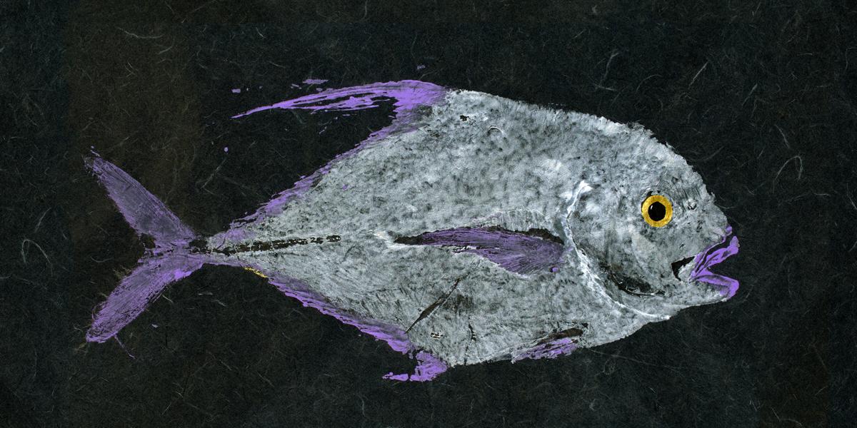 african pompano gyotaku rubbing