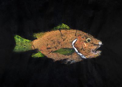Gyotaku Snapper