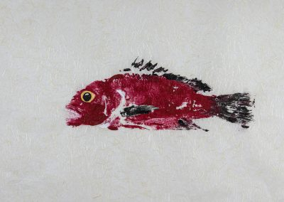 gyotaku Japanese saltwater art for sale