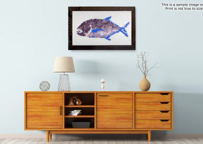 gyotaku Japanese saltwater art for sale