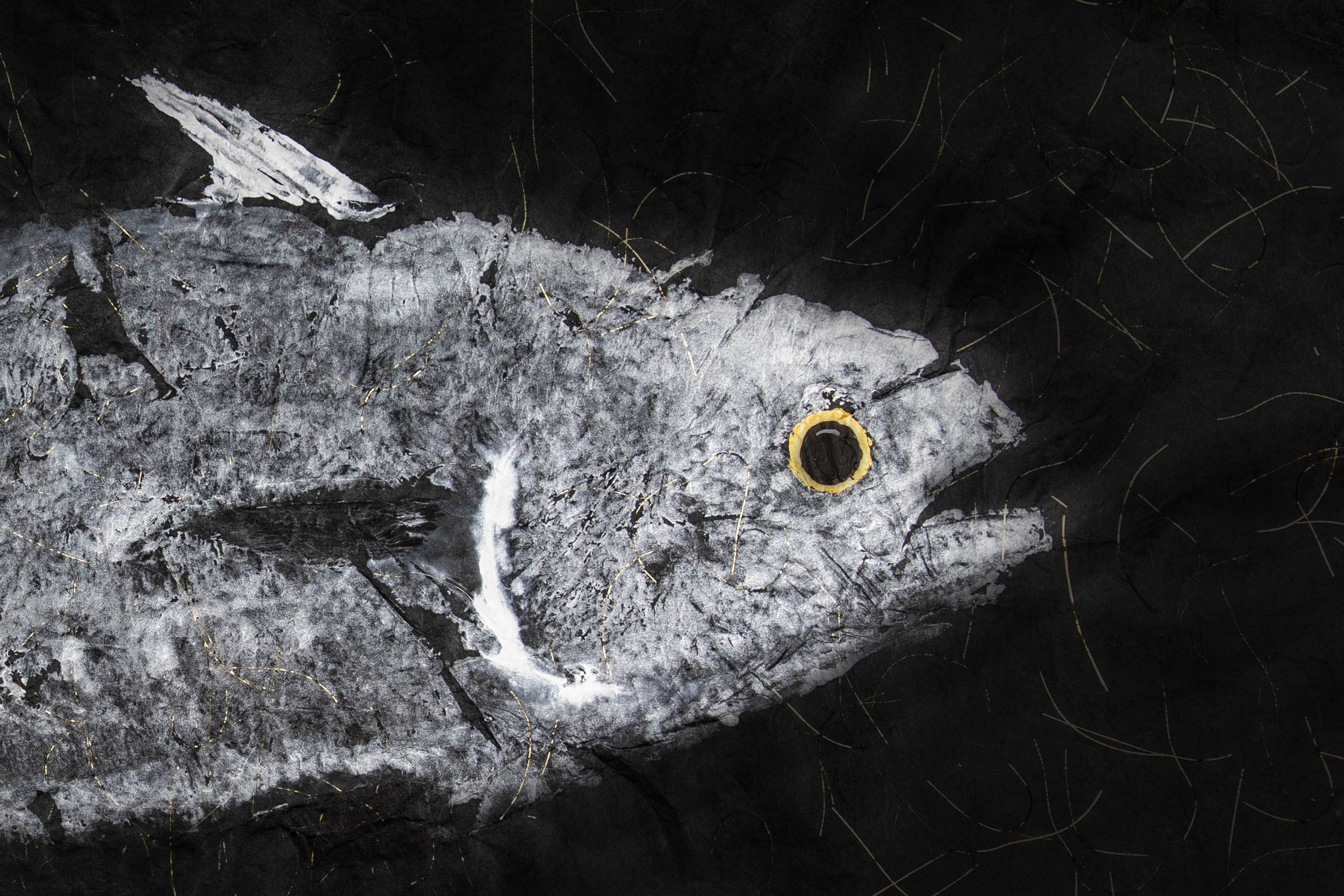 Gyotaku Skipjack Tuna